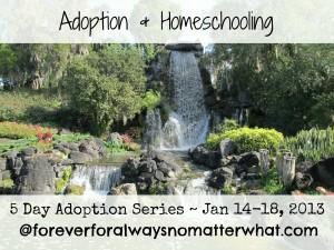 Adoption & Homeschooling