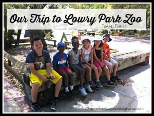 Lowry Park Zoo – Tampa, Florida