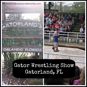 Gatorland Field Trip – Orlando, Florida