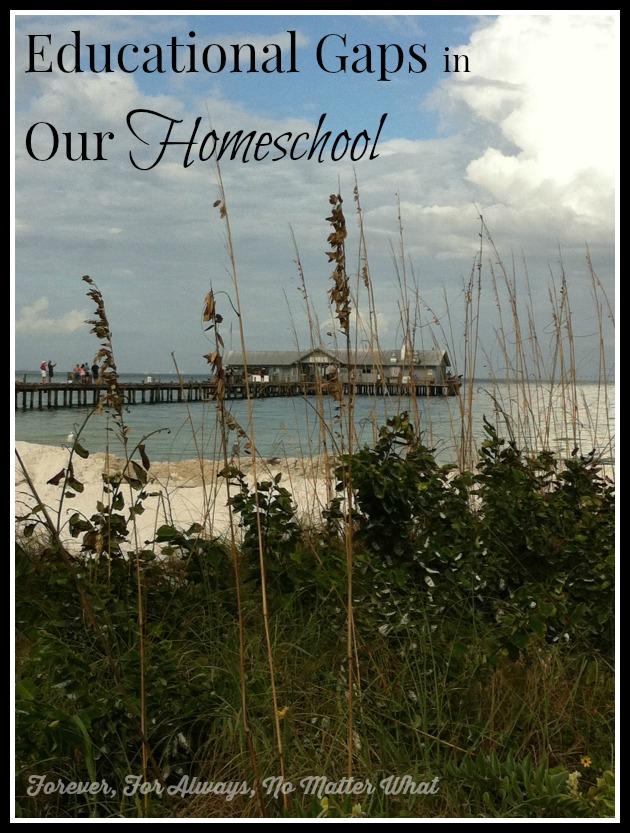 Educational Gaps in Our Homeschool