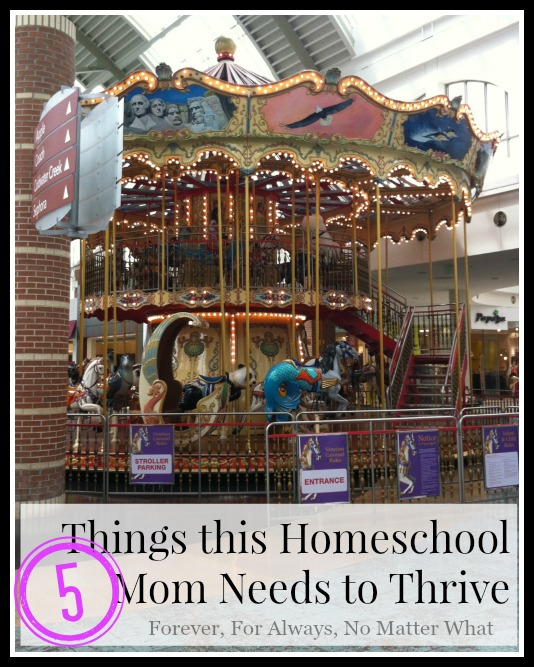 5 Things this Homeschool Mom Needs to Thrive